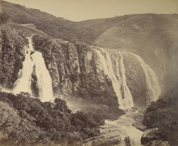 Lower falls, Pykara [Nilgiris].